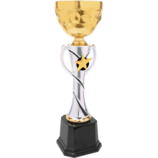 CMC333 Silver & Gold Metal Cup Trophy 14""