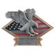DPS64 Diamond Plate Eagle Resin