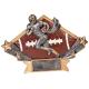 DSR14 Diamond Star Football Resin