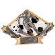 DSR15 Diamond Star Male Soccer Resin