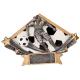 DSR16 Diamond Star Female Soccer Resin