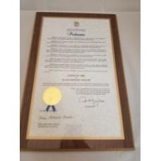 LAMINATIONS Custom Laminations of your Diploma, Certificate, License, etc.