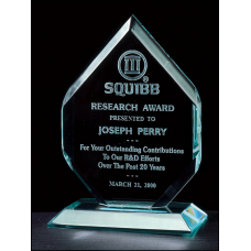 "A6406 Flame Series 3/4"" thick polished acrylic award on acrylic base."