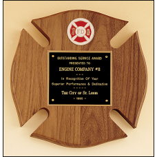 P2790-X Firematic Award.