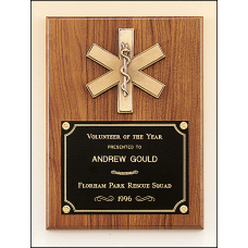 P2930 Emergency medical award with antique bronze finish casting.