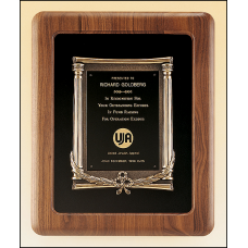 P2984 Solid American walnut plaque with an antique bronze casting on choice of velour backgrounds.