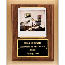 P350 Solid American walnut Airflyte plaque with 1 plate and photograph holder.