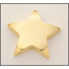 107 Gold Plated Star Paperweight